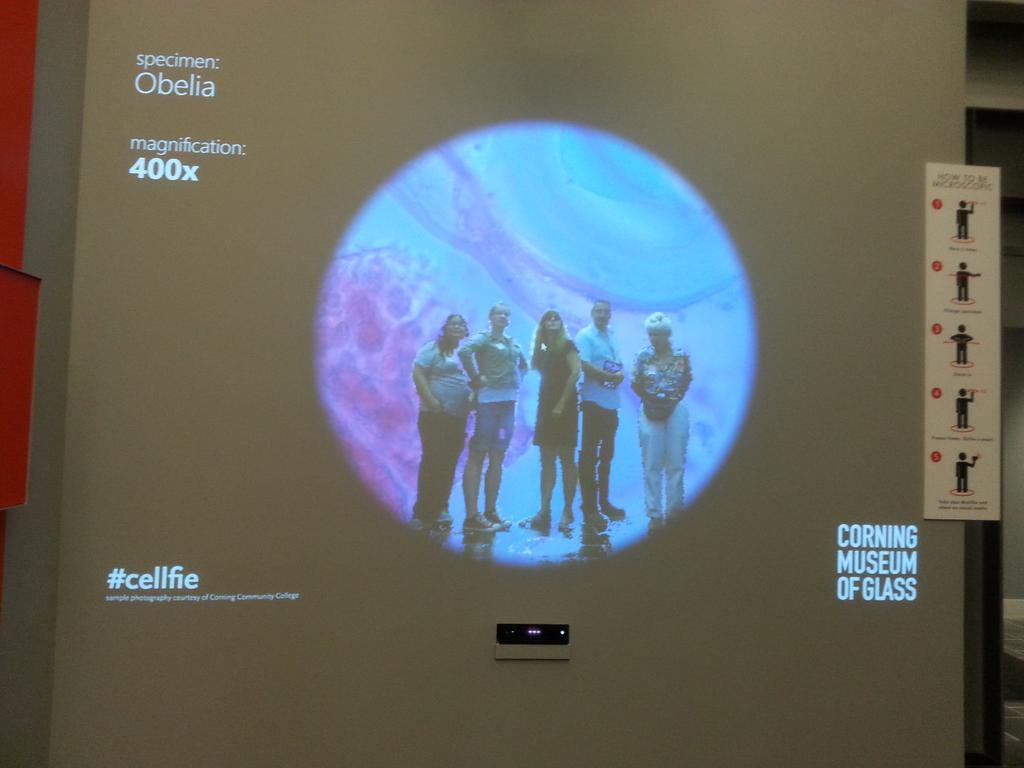 Group from Cornell Bio Labs poses for a #cellfie